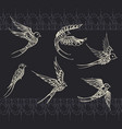 freehand drawing of birds swallows vector image vector image