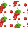 seamless pattern of red currant fruit vector image vector image