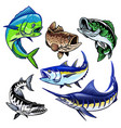 set gamefish bundle collection vector image vector image