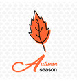 autumn season orange leaves maple background vector image