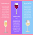 champagne red and white wine vector image
