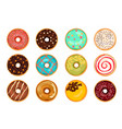 different types of donuts vector image vector image