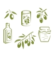 Healthy olives and olive oil vector image vector image