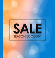 season discount banner blured background with the vector image vector image