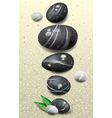 set stones vector image