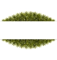 Christmas Banner Frame made of fir branches vector image
