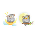 baanimal owl sleeping and looking at moon vector image