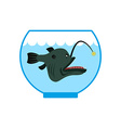 Deep sea fish in Aquarium Terrible anglerfish in vector image