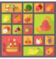 fruits and vegetarian food icons set vector image vector image