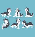 husky dog cartoon set vector image vector image
