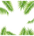 realistic 3d detailed green palm leaf frame vector image vector image