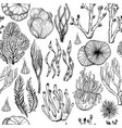 seamless pattern with hand drawn corals sea vector image vector image