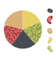 Set of Beans in Pie Chart Concept vector image vector image