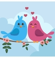 two colorful birds sitting on a branch vector image