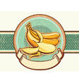 Vintage label with fresh bananas for text vector image vector image