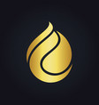 waterdrop abstract eco gold logo vector image