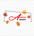 autumn season autumn leave square frame maple back vector image vector image
