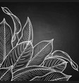 graphic heliconia leaves vector image vector image