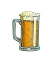 hand drawn mug color froth bubble beer drink vector image vector image