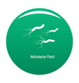 helicobacter pylory icon green vector image