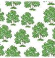 lilac bush seamless vector image vector image