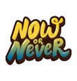 now or never hand drawn lettering isolated on vector image vector image