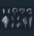 steam realistic tobacco smoke steaming cloud from vector image vector image