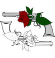 colt and rose vector image vector image