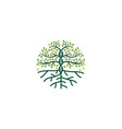 dna tree logo icon vector image