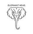 elephant head outline logo vector image