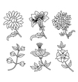 Flower branches black outline set vector image