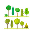 forest green trees vector image