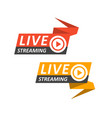 live streaming logo on banner - play button vector image vector image