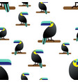 seamless pattern the tropican theme is the toucan vector image