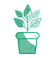 silhouette plant inside flowerpot to ecology vector image vector image
