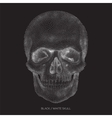 Skull 01 vector image vector image