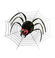 black spider web vector image