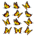 Collection of yellow butterflies flying in vector image vector image
