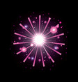 fireworks bursting in glowing white and magenta vector image vector image
