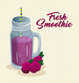 fruit smoothie icon vector image vector image