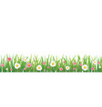 hello spring flower with grass isolated background vector image