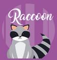 raccoon cute animal cartoon vector image
