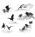 set scenes eagle life vector image