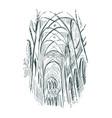 sketch church indoor line art vector image