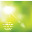 Warm Summer Sun Abstract Background With vector image vector image