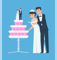 wedding couple happy groom and bride with vector image