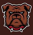 brown bulldog annimal head logo icon vector image vector image