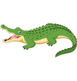cartoon crocodile isolated on white background vector image