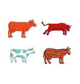 cow icon set color outline style vector image vector image