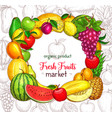 fruit frame border for organic food market poster vector image